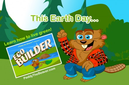 paddy-eco-builder